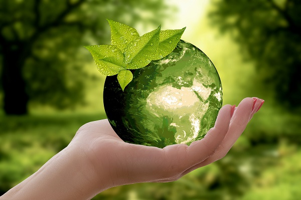 How to Make Your Small Business More Green